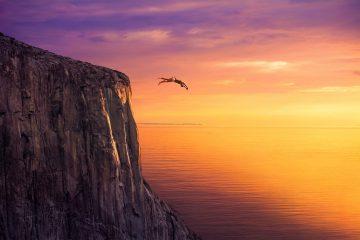 dive, sunset, sea